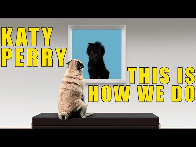 Katy Perry This Is How We Do Cute Puppy Version ...