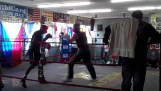A day at Wildcard Boxing Club