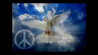 Marillion - White Feather (Traducción al español)