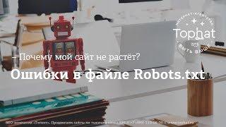 Ошибки в файле Robots.txt