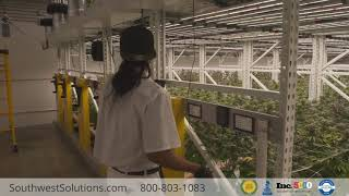 High Density Shelving For Medical Cannabis Storage