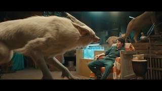 Woman to Arctic Fox Morph