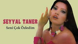 Seyyal Taner / Seni Çok Özledim