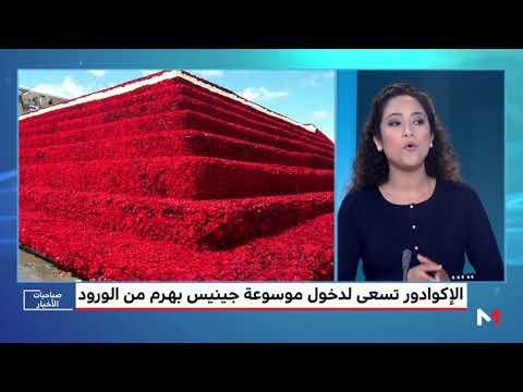 العرب اليوم - الإكوادور تسعى إلى دخول موسوعة