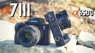 Sony A7iii vs Sony A6500: 4K Video + Photo Comparison