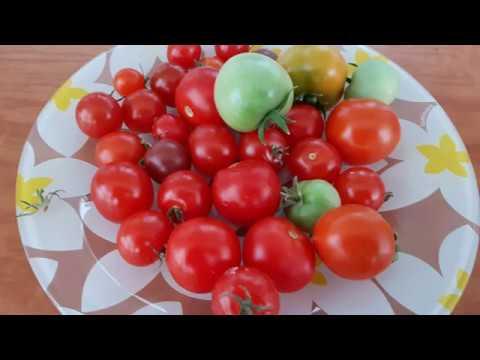 ГРЯДКА на БАЛКОНЕ 2019 . Огурцы,помидоры,перцы,клубника...Что мы выращивали этим летом.