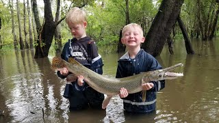 5 Days Fishing & Camping in Swamp - Catch & Cook Frogs, Gar, Crabs, Catfish & Buffalo.