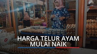 Harga Telur Ayam di Pasar Raya Padang Mulai Naik