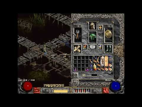By Photo Congress || Diablo 2 Plugy Diablo Clone