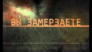 Жириновский, Владимир Вольфович, Предвыборный ролик ЛДПР