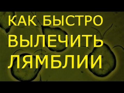 Средство от паразитов в организме человека капли
