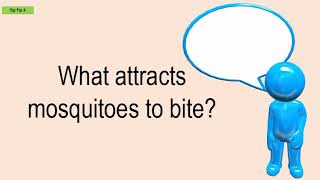 What Attracts Mosquitoes To Bite?