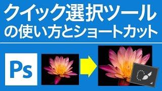 Photoshop 無料講座 クイック選択ツールの使い方とショートカット