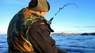 Ловля рыбы на кольском заливе