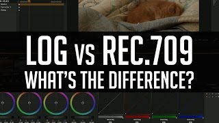 Log LUTs vs. 709 LUTs - What's The Difference?
