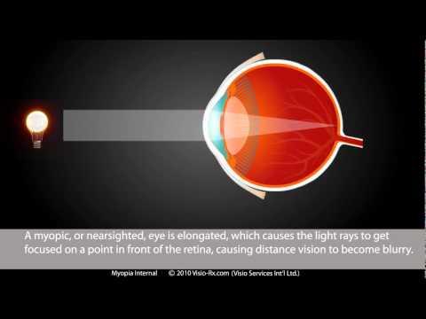 Termográfiai látás