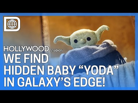 "Finding Baby ""Yoda"" in Galaxy's Edge - Hollywood Studios"