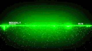Apocalyptica - Path Vol. II [ PVP Music ]