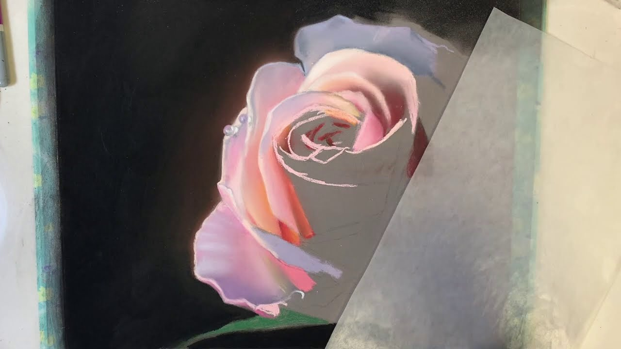 soft pastel painting of a realistic rose by carole rodrigue