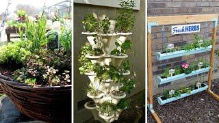 10 Backyard Herb Garden Ideas