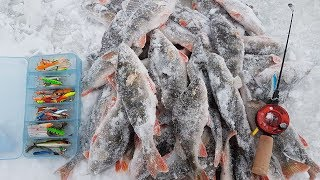 Рыбалка на рыбинском водохранилище зимой