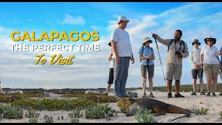 The best time to visit Galapagos is now...