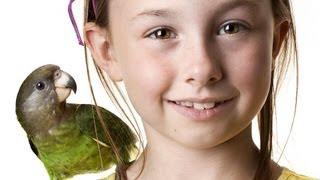 What Is the Best Pet Bird for a Child? | Pet Bird