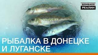 Отчеты о рыбалке луганской обл на