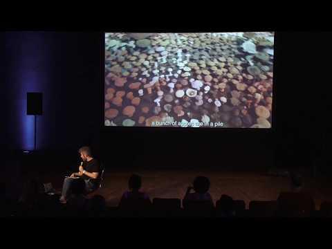 #33bienal (Simpósio Práticas de Atenção) Conversa com Bruno Moreschi