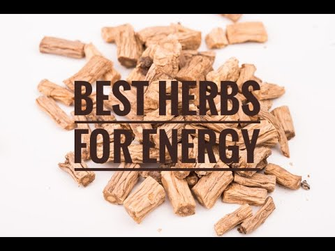 Best 11 Herbs for Energy