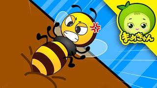「安全ヒーロー」 ハチに気をつけて! 【まめきゅん】子供の安全教室  赤ちゃんが喜ぶアニメ 幼児教育動画