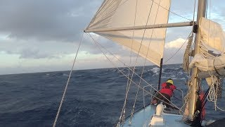 Getting Knocked Down— Sailing Uma  [Step 103]