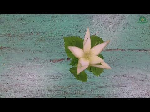 How to make Cubcumber flower (06)