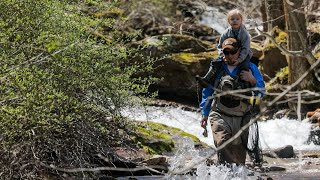 Chesapeake Climate: Brook Trout