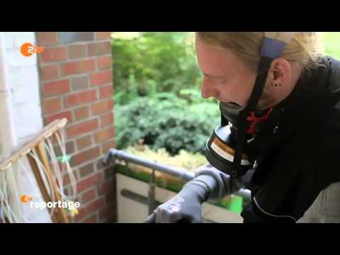 ZDF Reportage - Kammerjäger im Einsatz