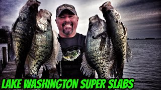 Monster Crappie of Lake Washington MS
