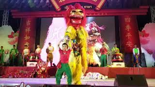 5 Kinds Lion Dance @ Nakornsawan, Thailand เชิดสิงโตนครสวรรค์ 5 ภาษา