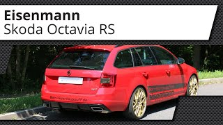 Video: Skoda Octavia RS 5E TSI Eisenmann Sportauspuffanlage ab Kat.