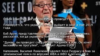 Стало известно, когда Ломаченко проведет следующий бой