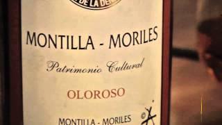 Descubre los vinos Montilla-Moriles