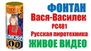 """Фонтан """"Вася - василек"""" РС4081 / РС481 от компании Интернет-магазин SalutMARI - видео"""