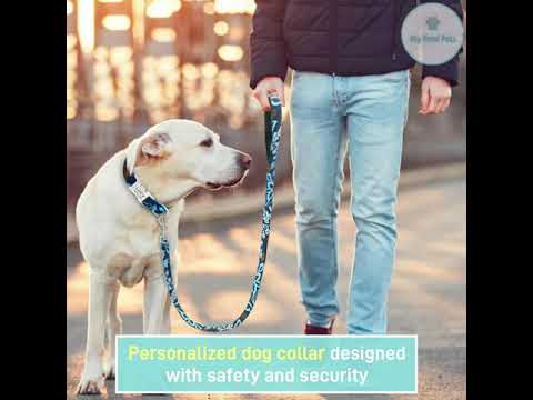 Personalised Dog Collar with Leash