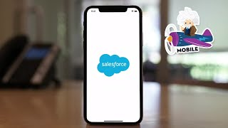 Salesforce Mobile App Demo