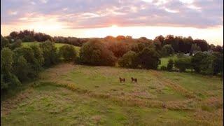 FPV Drone Sunset Crash - Insta360 GO2