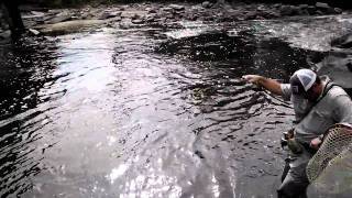 Fly Fishing the South Platte in Downtown Denver