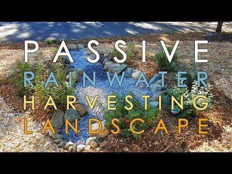 Suburban Ecological Landscape: Passive Rainwater Harvesting System