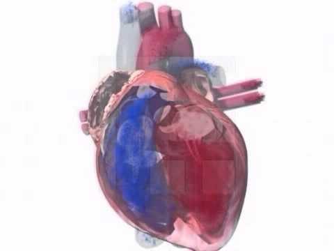 Medizinische Versorgung für Bluthochdruck Norm