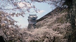 桜の城下町、津山へ