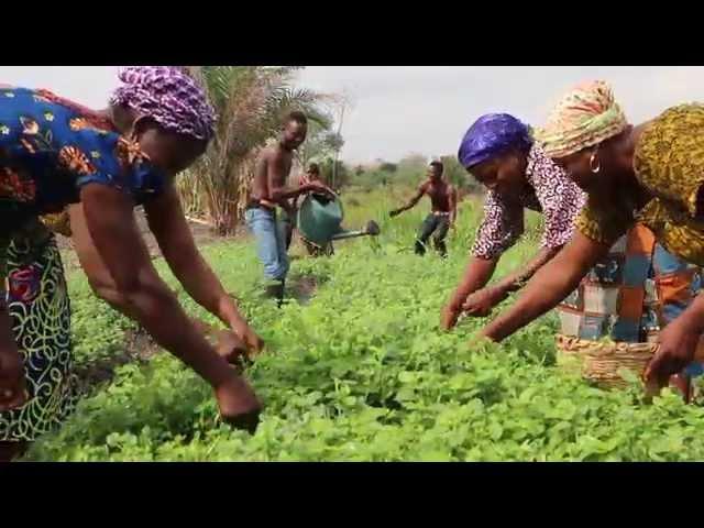 SPOT - Le Foncier au Bénin 2