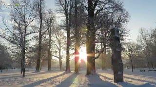 Zimska idila v Ljutomeru